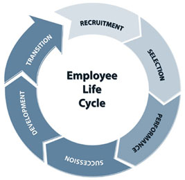 Basic Employee Lifecycle